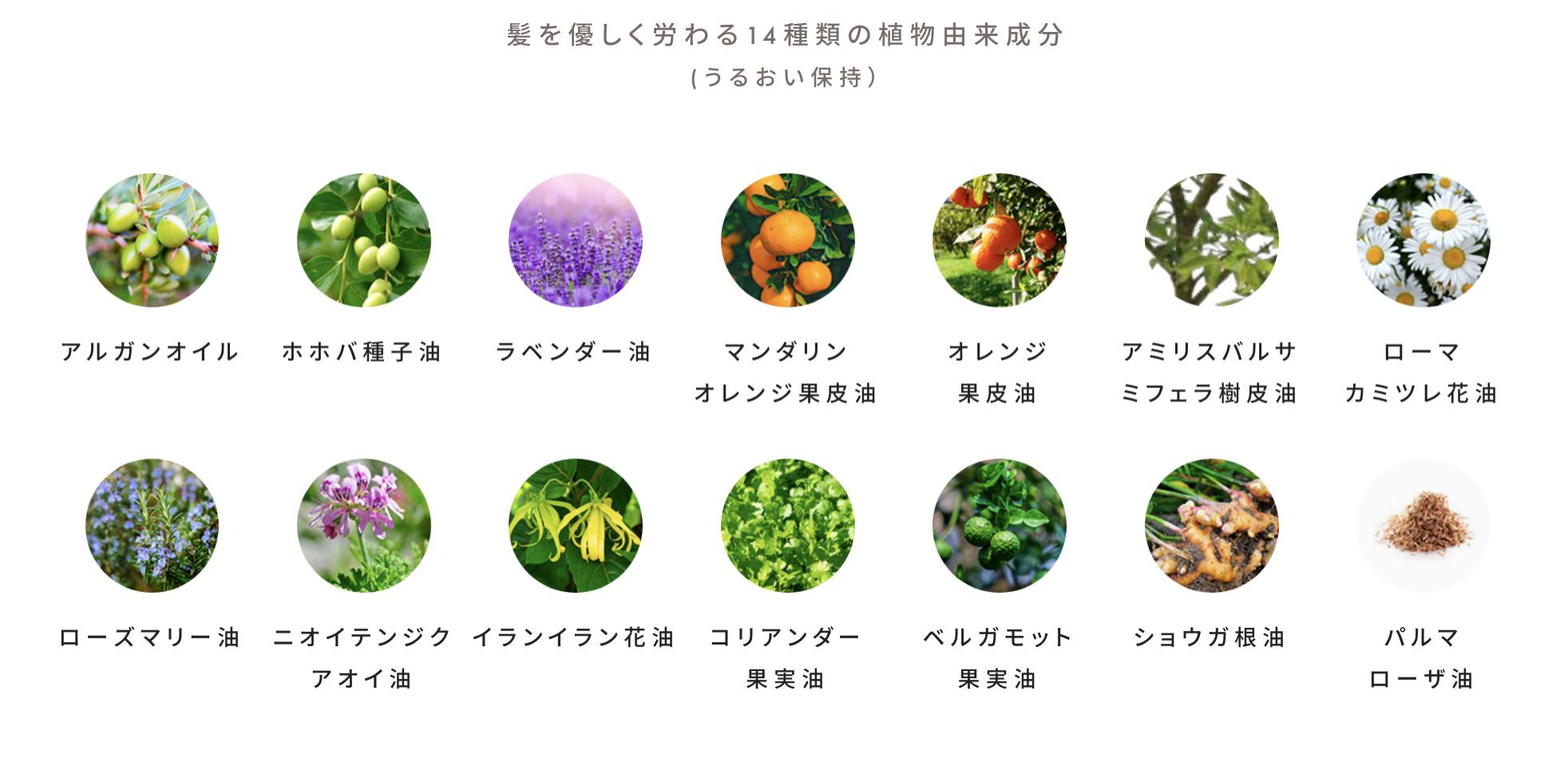 コンステラ植物由来配合成分
